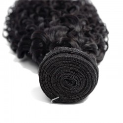 2 Bundle Deals Jerry Curly Brazilian Natural Virgin Human Hair with Closure Human Hair Weave 8A Natural Black Raw Hair