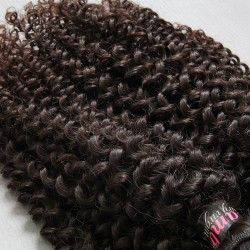 10PCS Wholesale Price Jerry Curls Natural Hair 9A Cambodian Jerry Curly Human Hair free shipping worldwide